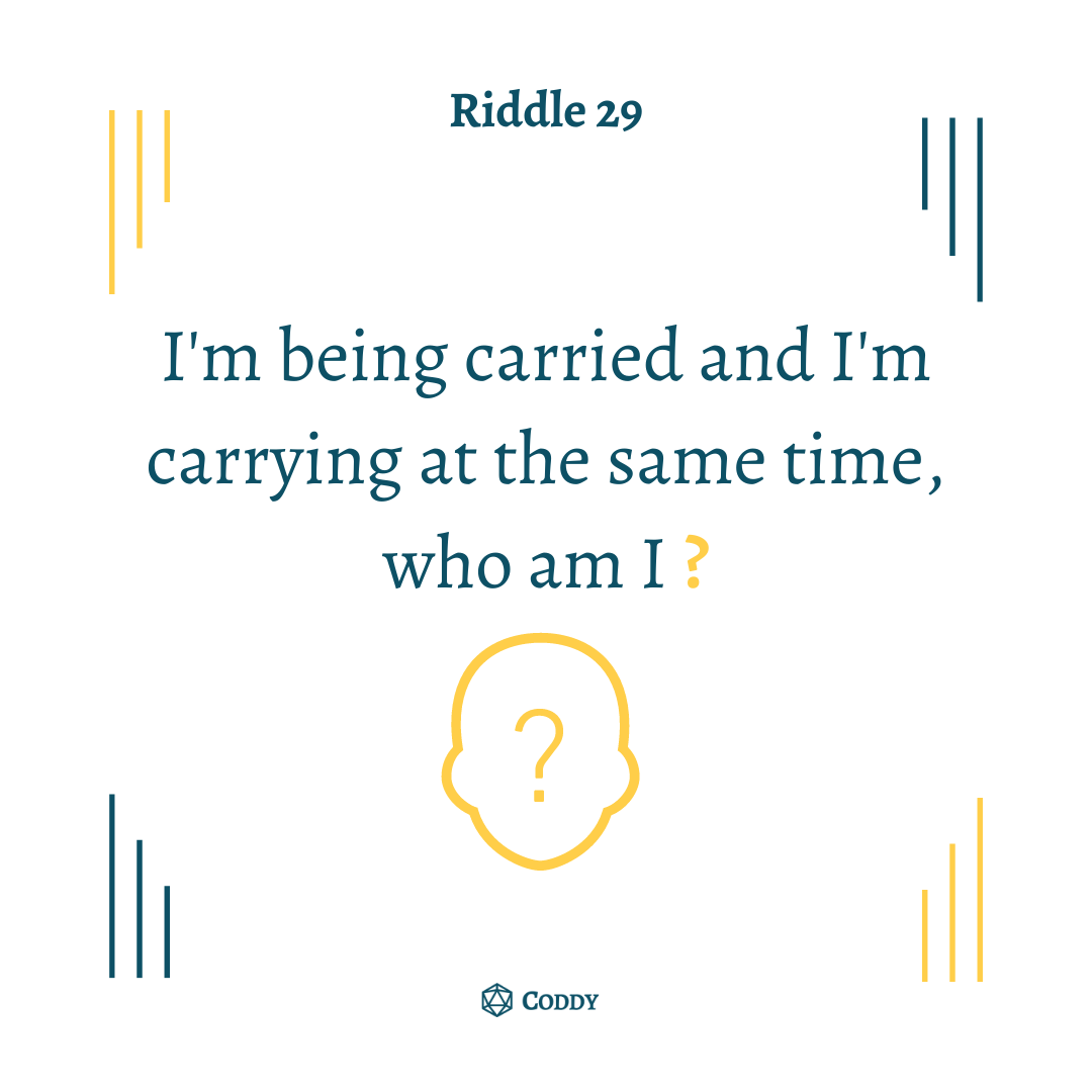 Riddle 29