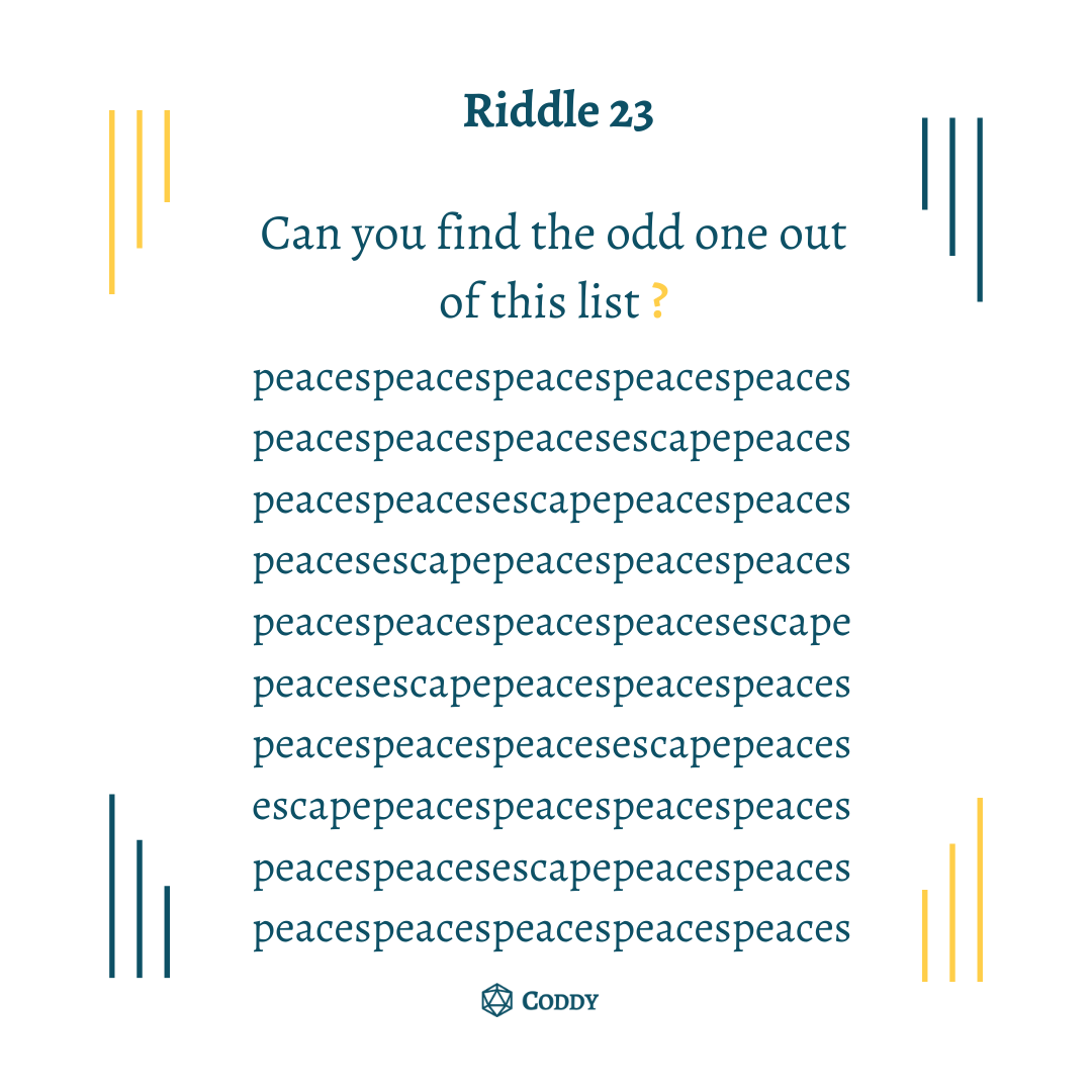 Riddle 23